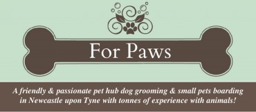 For Paws