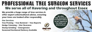 King Cuts Tree Services