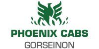 Phoenix Cabs Ltd (Swansea Junior Football League)